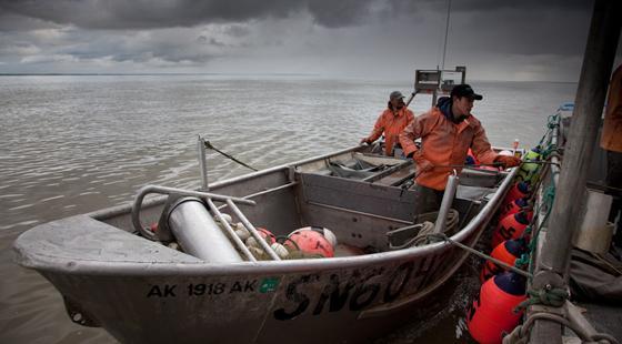 Bristol Bay net boats