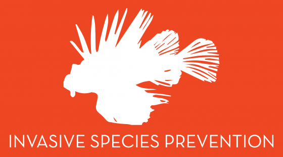 invasive species prevention