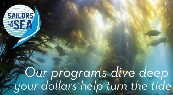our programs dive deep your dollars help turn the tide