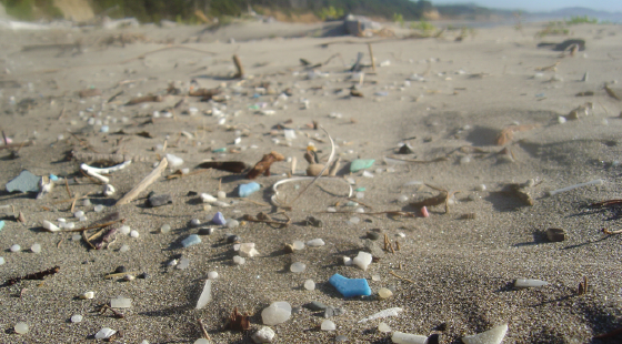 plastic pollution, microplastic
