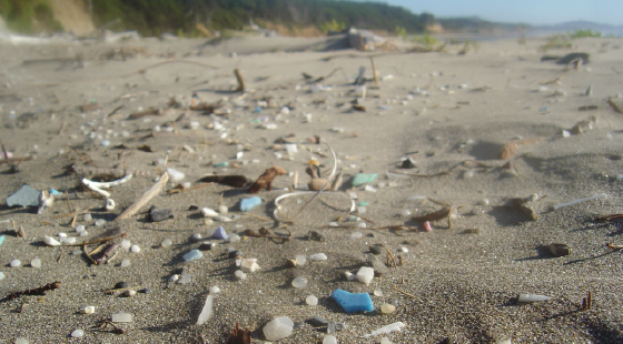marine science, plastic pollution