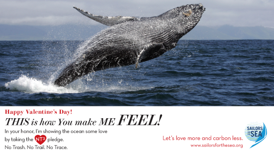 Valentine's Day e-card, whale, feel, love