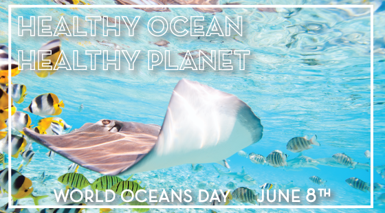 Healthy Ocean, Healthy Planet, World Oceans Day