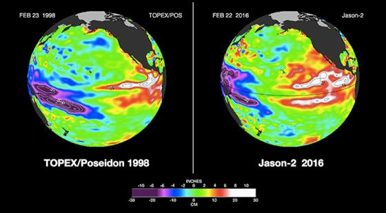 1998 El Niño compared to the 2016 El Niño while looking at sea surface height in the Pacific Ocean.