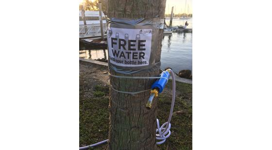 water filtration, regatta, palm tree, world cup miami