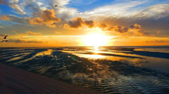 Rocas Atoll, Farol Island, Cemetério Island, lagoon, low tide