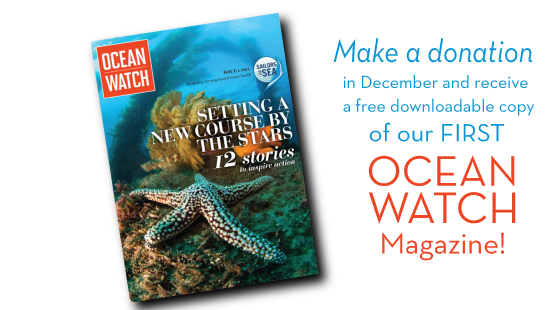 make a donation to get a free online copy of Ocean Watch Magazine