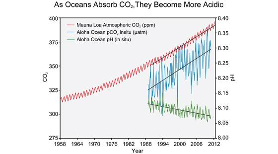 Of co2 in the atmosphere red at mauna loa and rising co2 levels in the