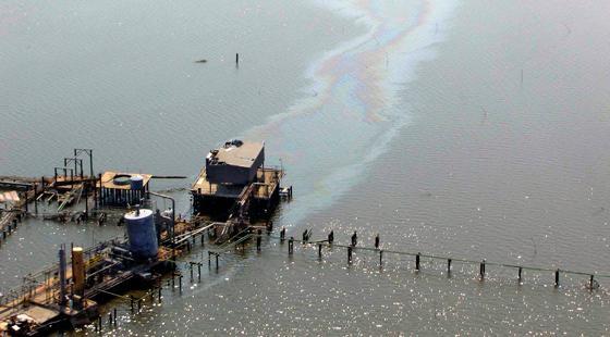 Oil spill in Breton Sound, LA., following hurricane Katrina