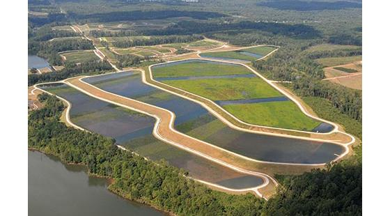 wetlands that filter treated water that recharges groundwater and supplies surface reservoirs