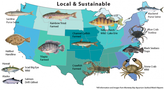 Local and sustainable options for seafood.