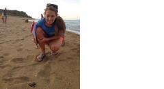 sea turtles, OBR, hatchling