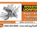 Report Lionfish