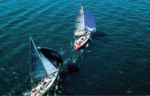 sailing, racing, sustainability