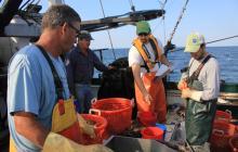 Fisheries Survey