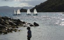 child admiring sailboats