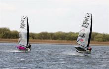 Irish moth sailors in breeze